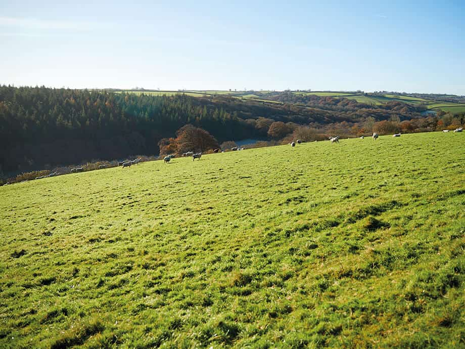 Seekings-Cottage-South-Molton-North-Devon-Fabulous-Holiday-Cottages-11
